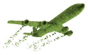 1-greenplane
